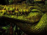 Neverland Crocodile