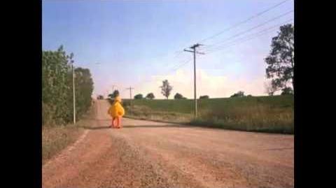 Sesame Street Presents Follow That Bird Big Bird Dodges