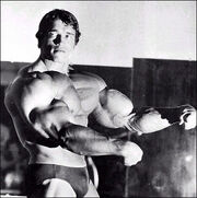 Arnold-schwarzenegger-big muscle