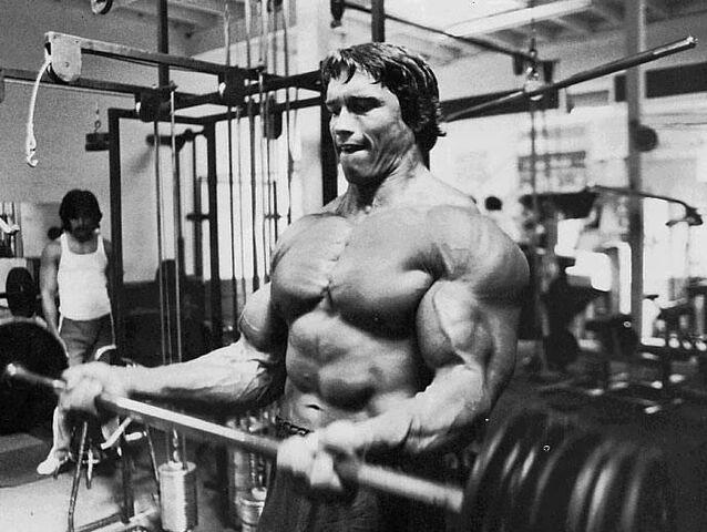 File:Arnold-schwarzenegger (2).jpg