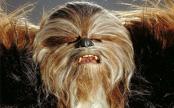 File:Wookiee.jpg
