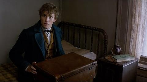 Fantastic Beasts and Where to Find Them - Announcement Trailer HD-0