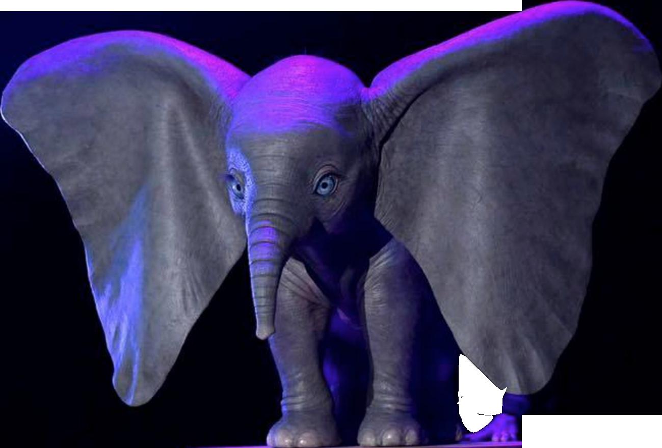 Dumbo 2019 Film Moviepedia Wiki Fandom