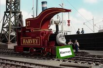 Harvey with nameboard