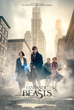 Fantastic Beasts and Where to Find Them Poster 3