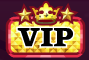 Star VIP logo.png