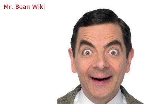 Mr. Bean Wiki