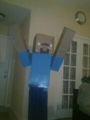 Steve (Minecraft Halloween Costume)