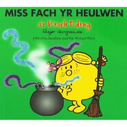 Little Miss Sunshine and the Wicked Witch Welsh Cover