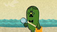 Mr Fussy Seashore