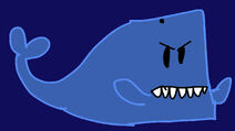 Grumpy the whale