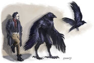 Corax forms