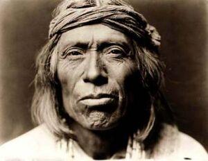 Zuni-warrior-19032-330x255