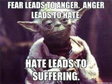 Fear-leads-to-anger-anger-leads-to-hate.-Hate-leads-to-suffering