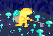 Salamander Farmer