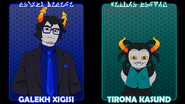Friendsim Vol 12 select