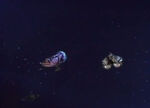 MST3k Space Mutiny ships pic 1