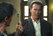 RiffTrax Presents- Arnold Schwarzenegger in The Expendables