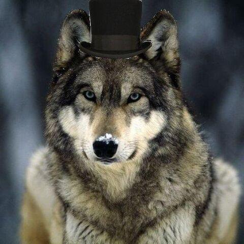 File:Lobo.jpg
