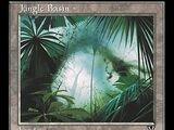 Jungle Basin