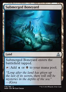 Submerged Boneyard OGW