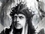 Boragor
