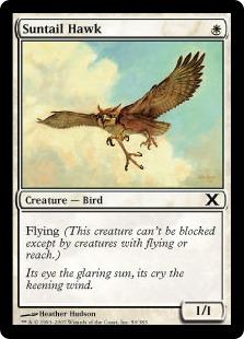 Suntail Hawk 10E