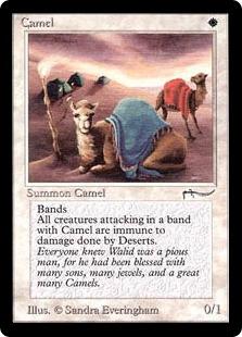 Camel ARN