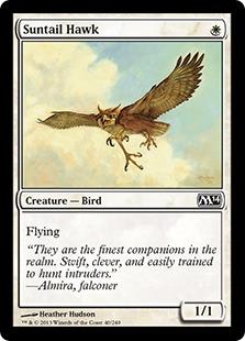 Suntail Hawk M14