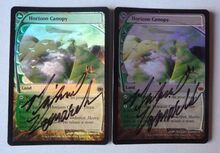 2013103010 2xFoil Signed Horizon Canopy