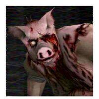 Piggsy head