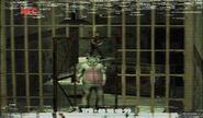 Rabbit escaping prison