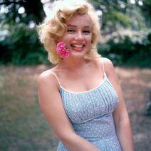 Marilyn-monroe 00410966