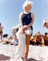 Some-Like-it-Hot-marilyn-monroe-16355440-780-1000