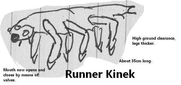 File:Runner Kinek by Holbenilord.png