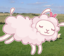 Sheepover