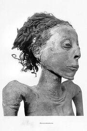 Mummy Nesitanebetashru Smith 1
