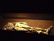 Mummydatgen