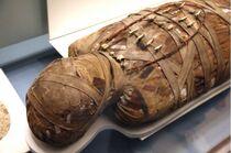Egyptian-mummy 0