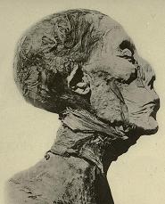 Amenhotep2
