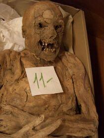 Mummy-1459451200