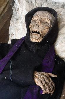 Mummy-1487794577