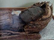 Momia cultura chinchorro año 3000 AC