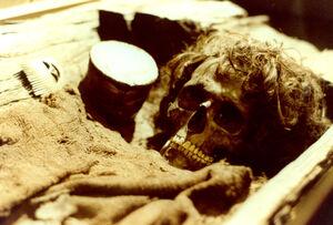 Borum Mummy