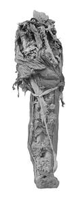 Ramses VI mummy