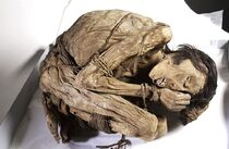 Peruvian mummified male, c.1200-1400 Wellcome L0035650