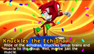 Knuckles toy
