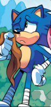 Sonic without his bandana