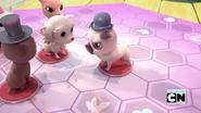 Pugnacious Pug