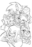 Sonic Boom -3 raw